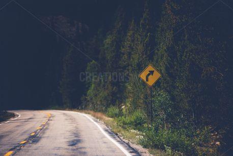 Opposite Directions (81689)