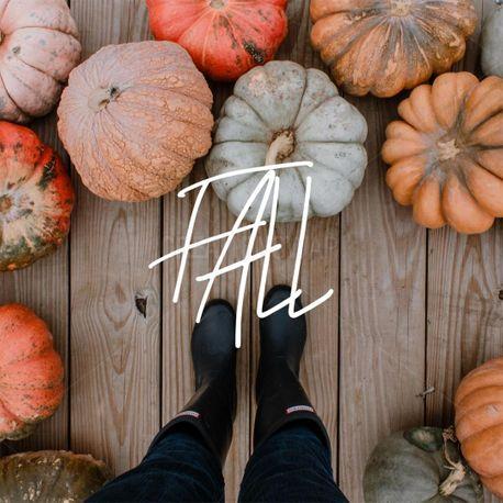 Fall (82448)