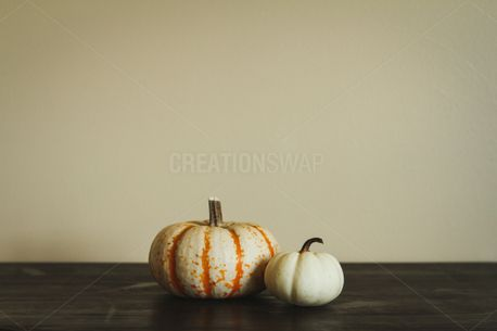 Two Pumpkins on Table (82568)