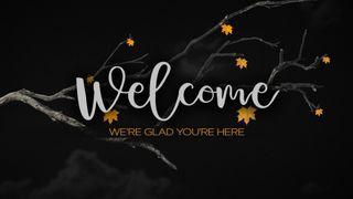 Fresh Fall (Welcome)