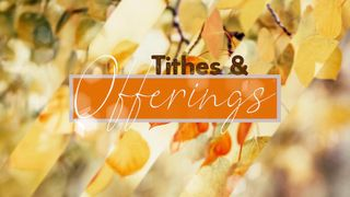 Tithes And Offerings Fall Loop