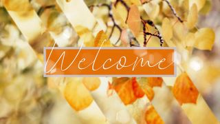 Welcome Autumn Golden Leaves