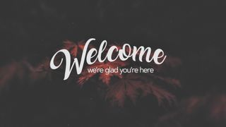 Elegant Fall (Welcome)