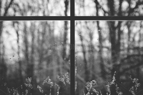 Winter Window (83508)