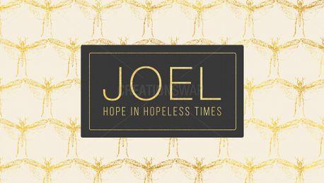 Joel (83751)