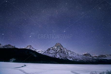 Starry Wonderland (83878)