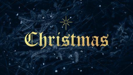 Christmas Star (84105)