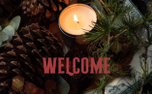 Pine Cone Welcome (84170)