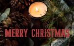 Pine Cone Christmas (84176)