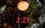 Pine Cone Timer (84179)