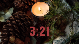 Pine Cone Timer
