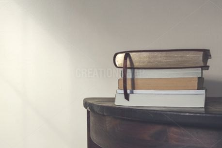 Bible On Books (84237)