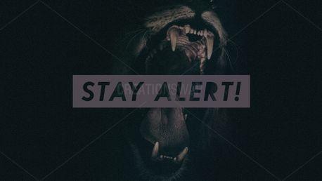 Stay Alert! (84241)
