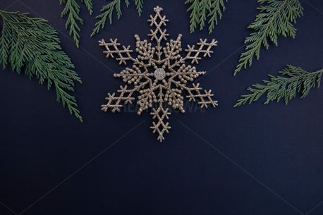 Gold Snowflake + Greenery (84285)