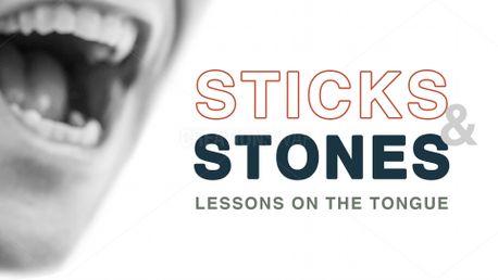 Sticks & Stones (84436)