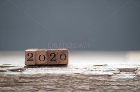Year 2020 (84732)