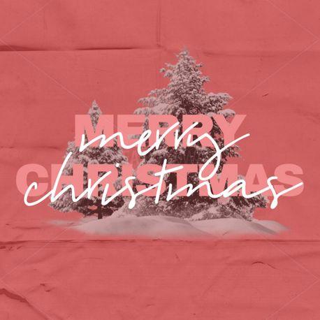 Merry Christmas (84856)