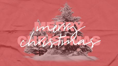 Merry Christmas (84857)