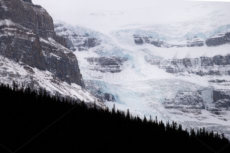 Ice Fields (84899)