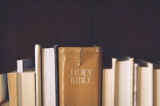 Bible Among Books