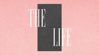 The Life | Series