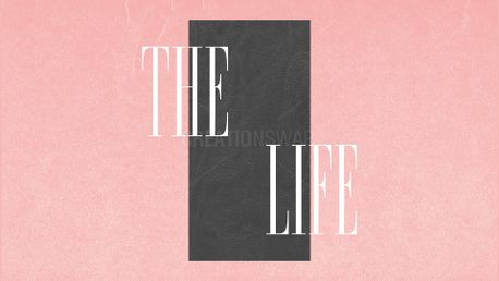 The Life | Series (85148)
