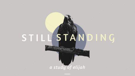 Still Standing (85378)