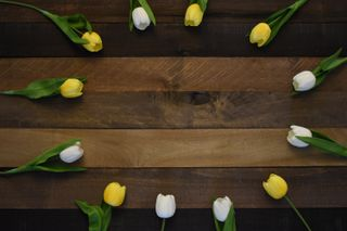 Rustic Wood Tulip Circle