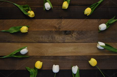 Rustic Wood Tulip Circle (85557)