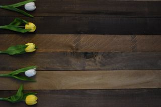 Rustic Wood Tulip Border