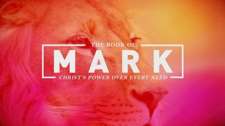 Mark Stills (85980)