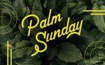 Palm Sunday (85988)