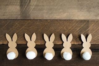 Rustic Cottontail Bunny Border