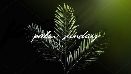 Palm Sunday (86178)