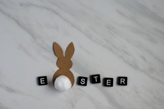 Easter with Cottontail Bunny