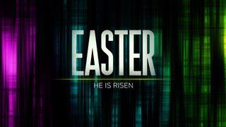 Alive (Easter)