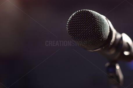 Microphone (86696)