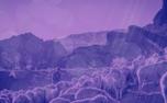 Shepherd Background (87073)