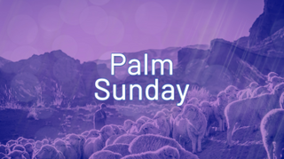 Shepherd Palm Sunday