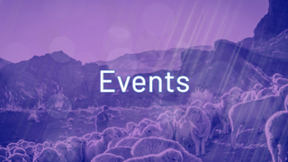 Shepherd Events