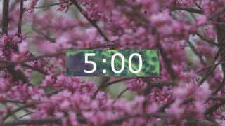 Spring Tree Countdown