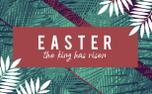 Palm Sunday Motion Title (87212)