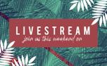 Palm Sunday Motion Title (87215)