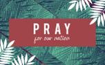 Palm Sunday Motion Title (87217)