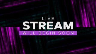 Online (Live Stream)
