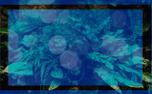 Forrest Green Background (87518)