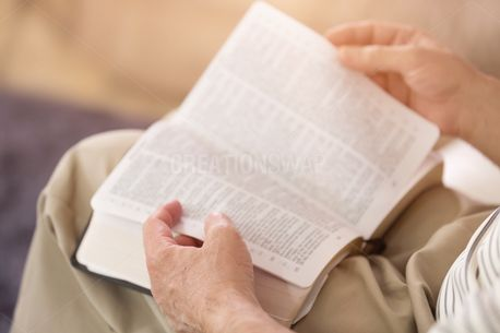 Man Reading the Bible (87802)