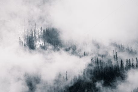 Surrounded by Fog (88332)