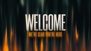 Quinn (Welcome)
