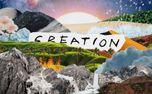 Creation (88455)